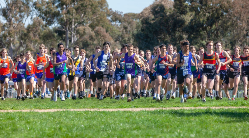 2019 Cross Country Results